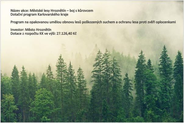 Městské lesy Hroznětín – boj s kůrovcem